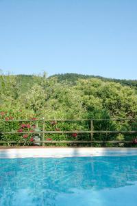 Pool-foliage