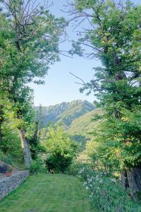 Topponeco-hill